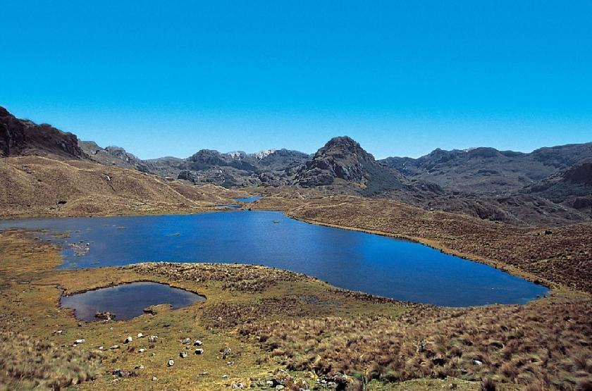 Visiter parc national de cajas for Parc a visiter